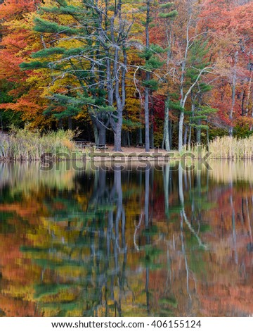 Colorful Trees Reflected in a Pond in Fall - stock photo