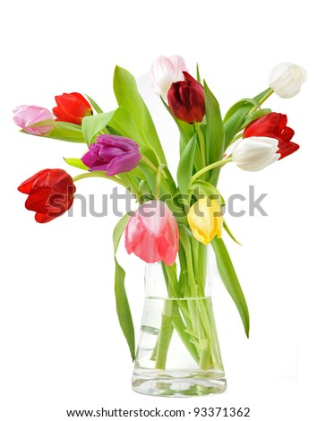 Colorful tulips in vase - stock photo