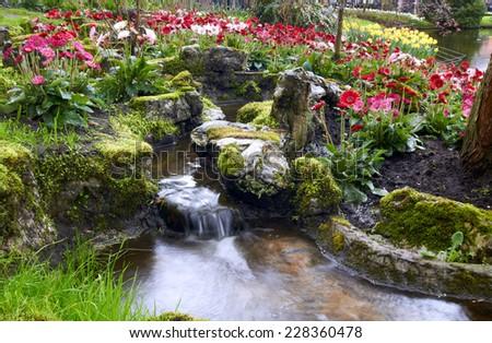 Colorful Tulips near decorative creeck with  waterfall in Keukenhof Garden - stock photo