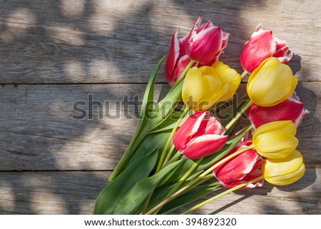 Colorful tulips on sunny garden table. Top view with copy space - stock photo