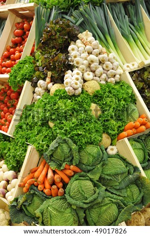 colorful vegetables, tomatoes, leeks, garlics, salads, lettuces, carrots, cabbages, celery root and purple turnips