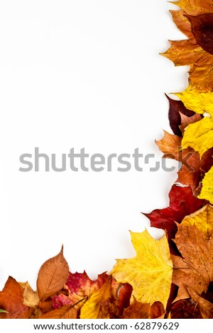 Colorful vertical frame of fallen autumn leaves - stock photo
