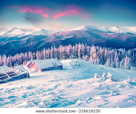 Colorful winter morning in the Carpathian mountains. Glade Pozharska, Carpathian, Ukraine, Europe.