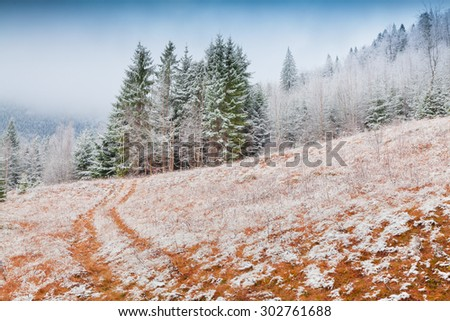 Colorful winter morning in the mountains. First snow in December. - stock photo