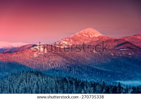 Colorful winter morning in the mountains. View of the fog and  snow tops. - stock photo