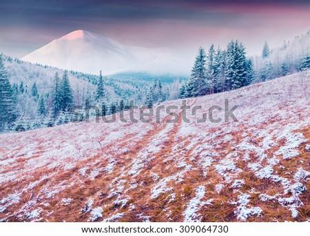 Colorful winter sunrise in the Carpathian mountains. Kukol ridge, Ukraine, Europe. Inastagram toning. - stock photo