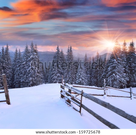 Colorful winter sunrise in the mountains - stock photo