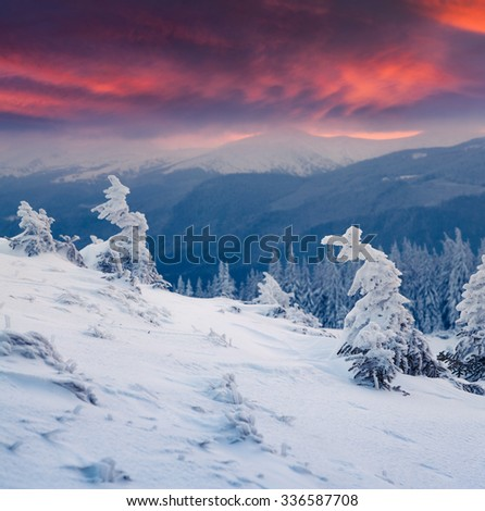 Colorful winter sunrise in the mountains. Happy New Year!