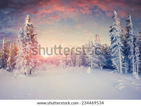 Colorful winter sunrise in the mountains. Retro style - stock photo