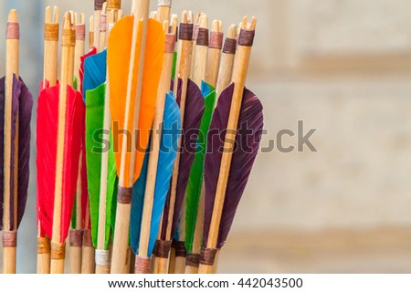 colorful wooden arrows for the bow closeup - stock photo