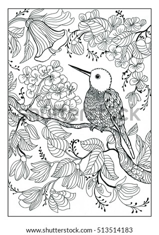 Coloring Book Twenty Pages Bird And Flowers Page Fourteen