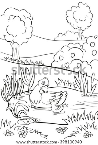 Coloring Page Cute Duck Swims In The Pond With Little Duckling They Are