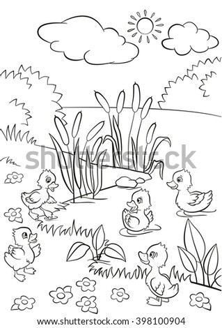 Coloring pages five little cute ducklings stock vector for Little quack coloring pages
