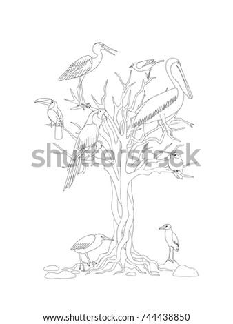 coloring page with tree and tropical birds for kids and adult coloring book album