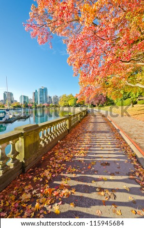 Colors of the autumn. Gorgeous sea walk in the park. Stanley Park in Vancouver. Canada. - stock photo