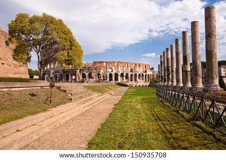 Colosseo and venus temple columns path and tree view from Roman forum - Italy