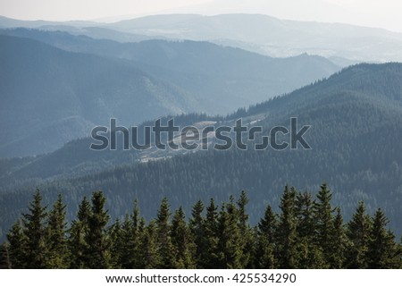 Colour picture of mountains covered by forests