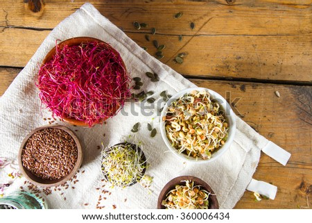 Colourful and healthy crunchy mixed seeds and sprouts:, bean sprouts, red beet sprouts, alfalfa, linseed. - stock photo