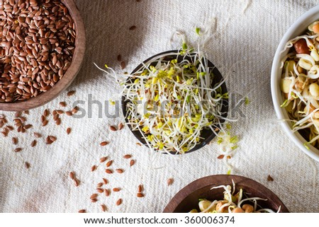 Colourful and healthy crunchy mixed seeds and various sprouts. Alfalfa and linseed. - stock photo