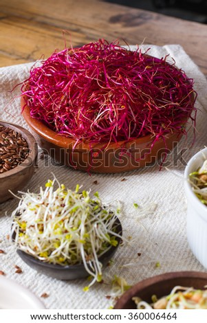Colourful and healthy crunchy mixed seeds and various sprouts. Focus on red beet sprouts, with alfalfa and linseed also in the frame. - stock photo