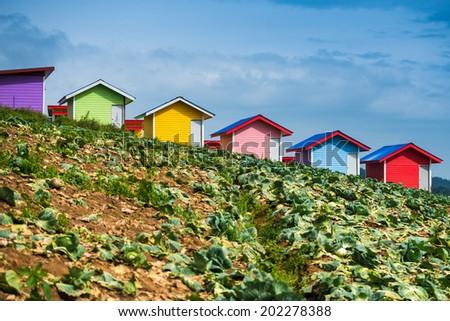 Colourful farm house on the field - stock photo