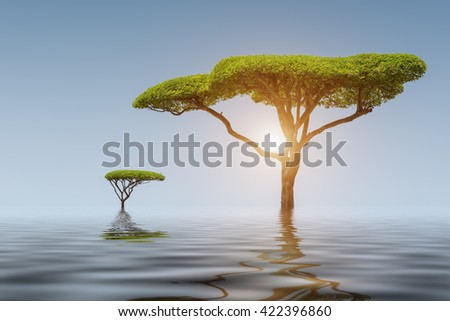 Colourful Lake one tree in the sunlight at sunset - stock photo