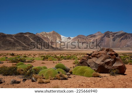 Colourful mountains at Suriplaza in the Atacama Desert of north east Chile. The green plants are rare native cushion plants, Azorella compacta, or llareta in Spanish. Altitude is above 4,000 metres. - stock photo