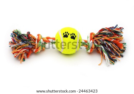 Colourful toy for dog with tennis ball - stock photo