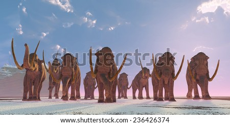 Columbian Mammoth Herd - As winter sets in a herd of Columbian Mammoths migrate to a warmer climate. - stock photo