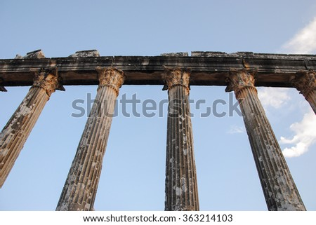 columns of Temple of Zeus ruins in ancient Greek city of Euromos Selimiye, Mugla province, Turkey