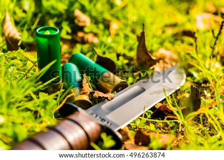 Combat knife and 12 gauge bullets on the grass with fallen leaves. Close up view of a grass level