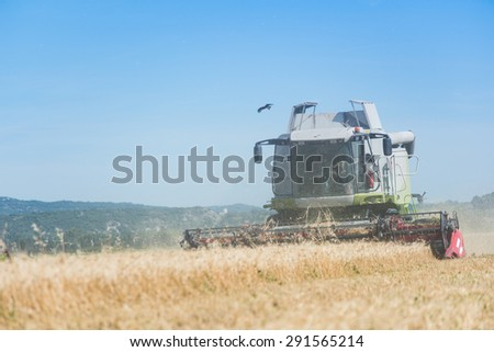 combine harvester agriculture machine harvesting golden ripe wheat field - stock photo