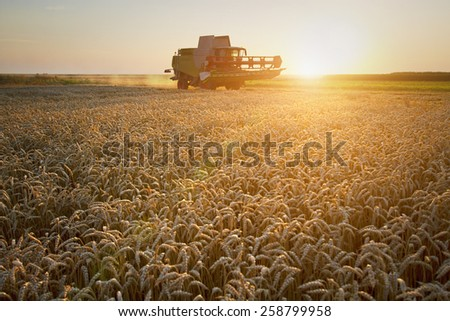 Combine harvester moving on the field of wheat with beautiful sunset in the background - stock photo