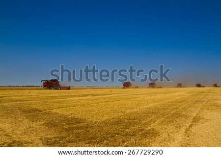 Combine harvester on a wheat field at harvest time - stock photo