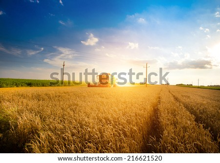 Combine harvester working in the field of wheat - stock photo