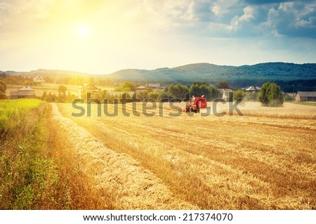 combine harvester working on a corn field - stock photo