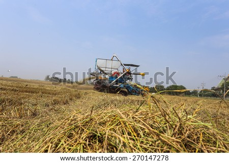 combine harvesters the farmers Thailand - stock photo
