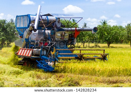 Combine harvesters were reaping - stock photo