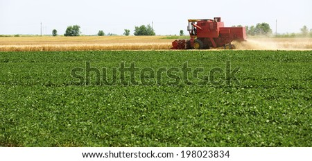 Combine harvesting barley over soybean fields - stock photo