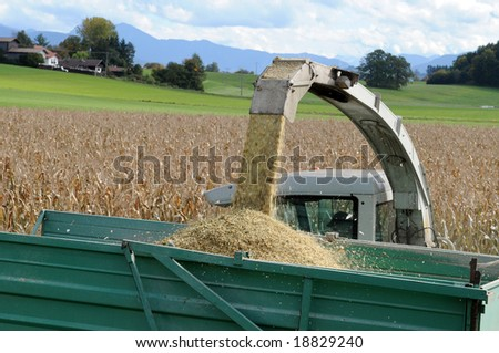 Combine harvesting corn in Bavaria - stock photo