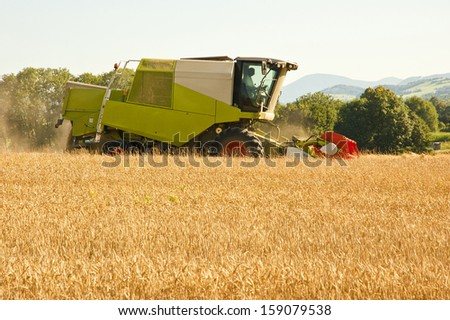 combine harvesting wheat in summer afternoon - stock photo