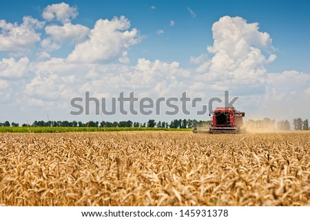 Combine harvesting wheat on field - stock photo