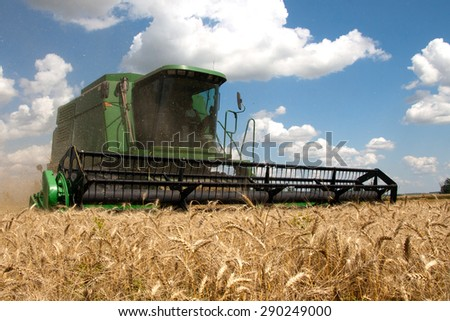 Combine harvests wheat on a field in sunny summer day - stock photo
