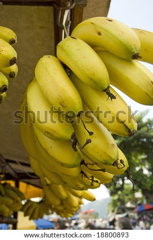 Combs of banana up for sale at market place