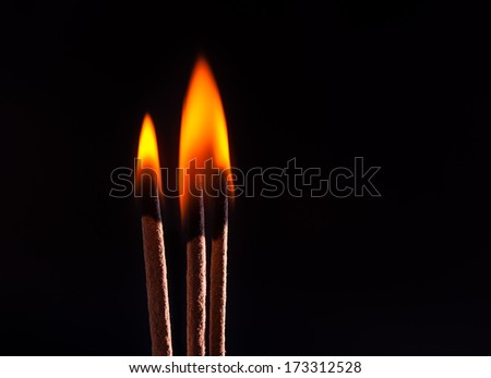 combustible incense - stock photo