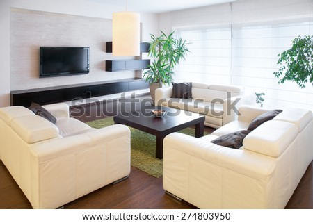 Comfortable white sofas at living room - stock photo