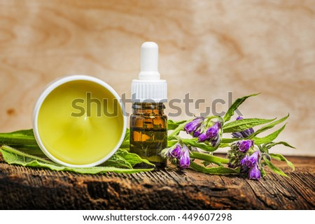 comfrey herb - Symphytum officinale - stock photo