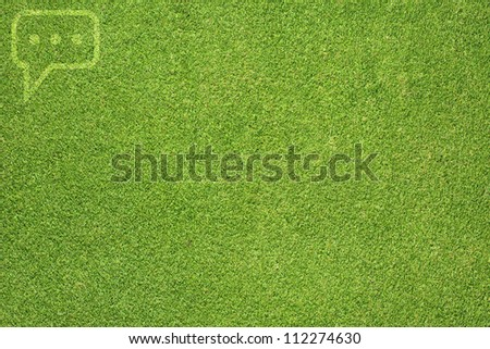 Comment on green grass texture and  background