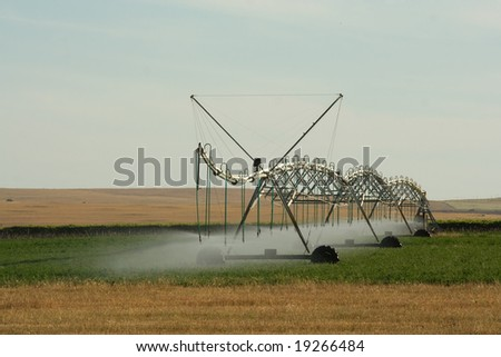 Commercial mobile irrigation unit spraying water on crops in the Swartland region of South Africa.