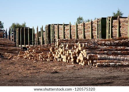 Commodity cars transporting wood stand in a warehouse - stock photo